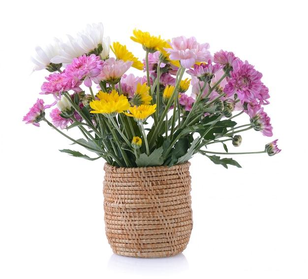 Merce nel carrello dei crisantemi su fondo bianco