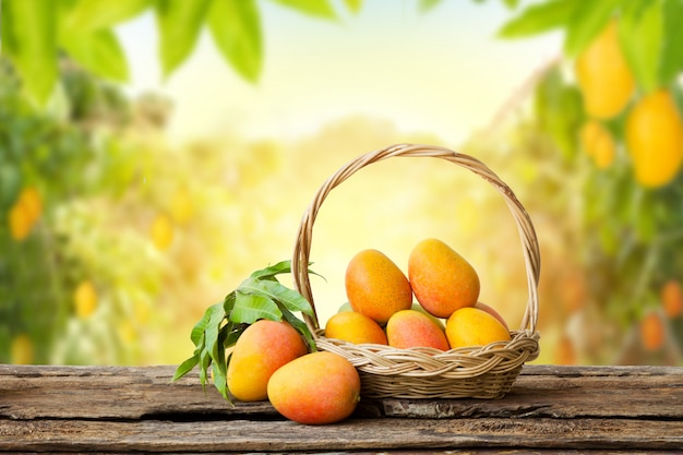 Merce nel carrello della frutta tropicale del mango sulla tavola di legno con il fondo dell'azienda agricola