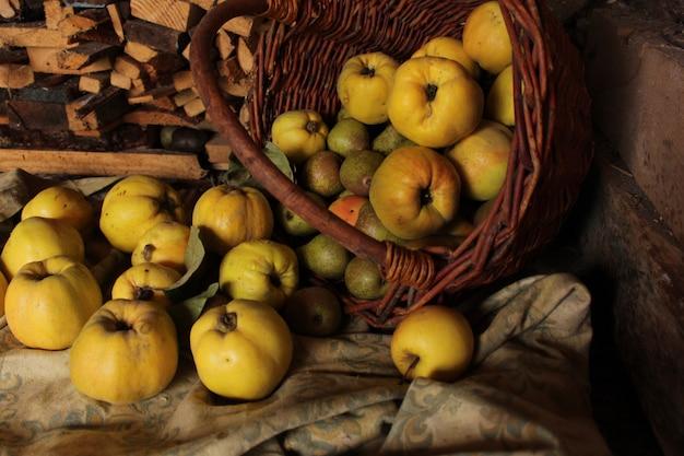 Merce nel carrello della mela cotogna. grandi frutta e fetta mature della cotogna con fogliame verde nel tardo autunno sulla tavola di legno marrone. vista dall'alto
