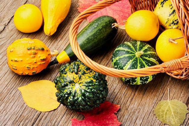 Merce nel carrello di autumn pumpkin