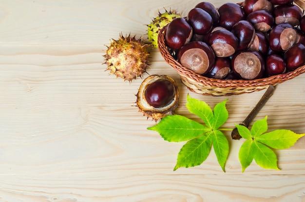Merce nel carrello fresca delle castagne della conchiglia con le foglie. piatti tradizionali. ippocastani, aesculus hippocastanum. copia spazio.