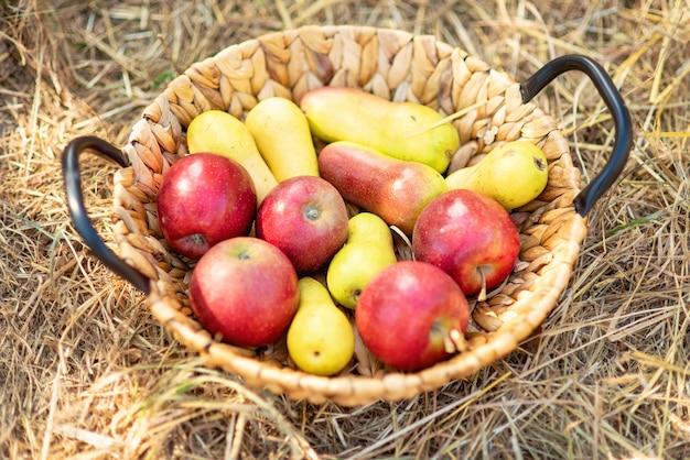Merce nel carrello rossa matura delle pere e delle mele su erba su erba.