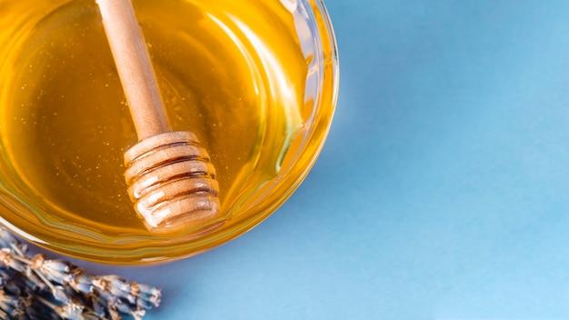 Merlo acquaiolo dell'angolo alto in ciotola del miele con lo spazio della copia