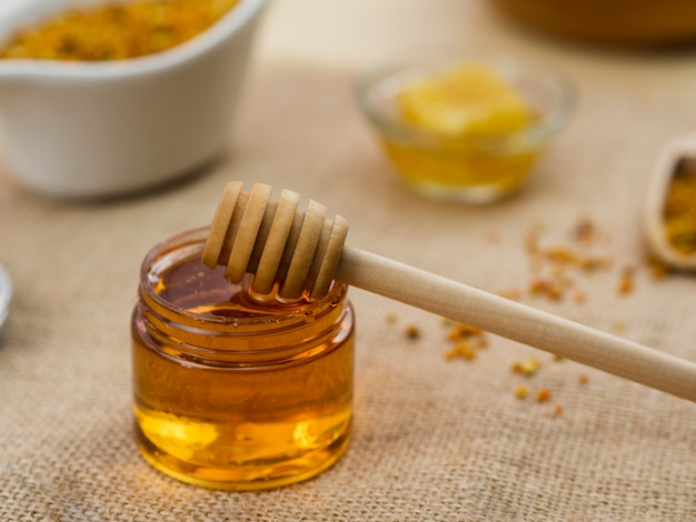 Merlo acquaiolo di legno in miele appiccicoso