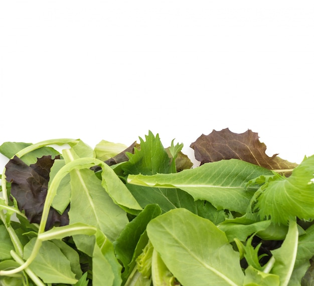 Mescolare l'insalata con rucola, frisone, radicchio e lattuga di agnello