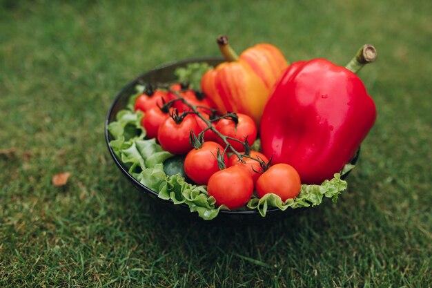 Messa a fuoco selettiva di peperoni rossi e gialli sani