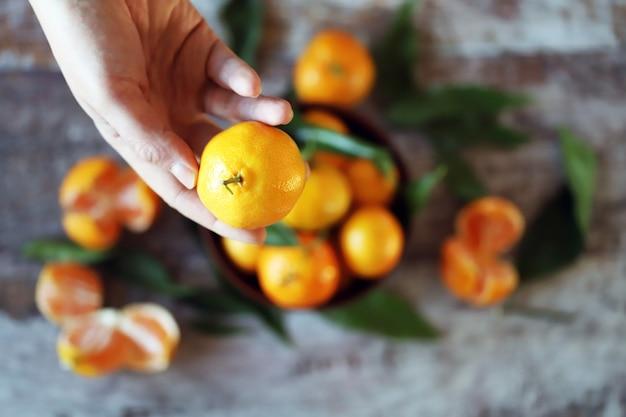 Messa a fuoco selettiva. la mano tiene mandrin. mandarini maturi con foglie.