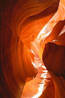 Metraggio della natura del grand canyon in arizona usa