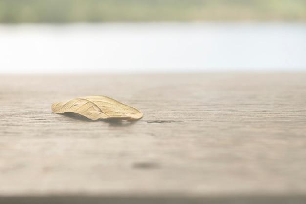Metti le foglie sul tavolo di legno