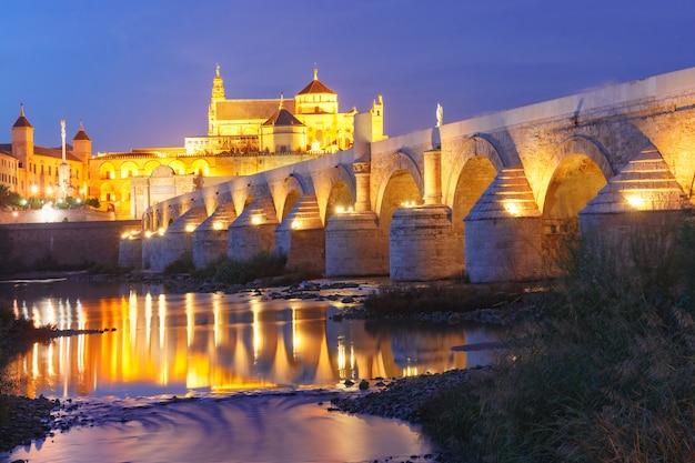 Mezquita di notte e ponte romano a cordova, spagna