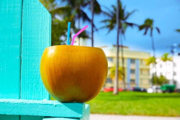 Miami south beach 2 cannucce di cocco florida