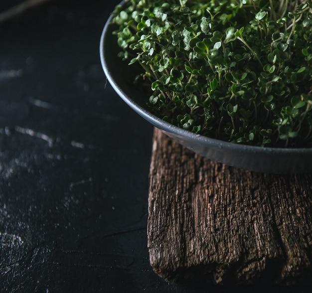 Microgreen in un piatto grigio su un rustico in legno