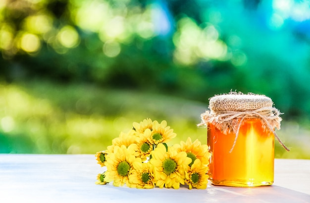 Miele e fiori biologici naturali. dono della nonna. miele selvatico concetto di primavera. medicina naturale. concetto stagionale. copia spazio