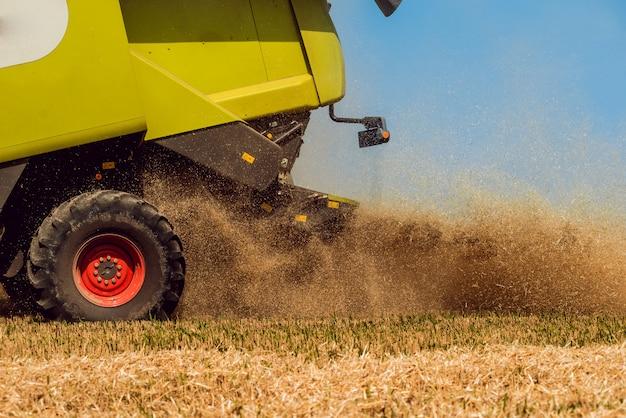 Mietitrebbia in azione sul campo di grano