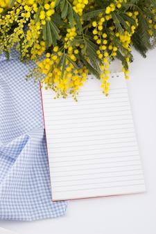 Mimosa e quaderno