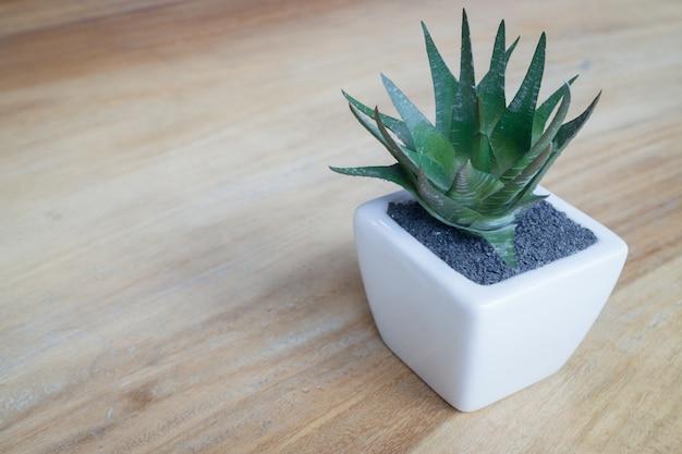 Mini vaso sulla tavola di legno