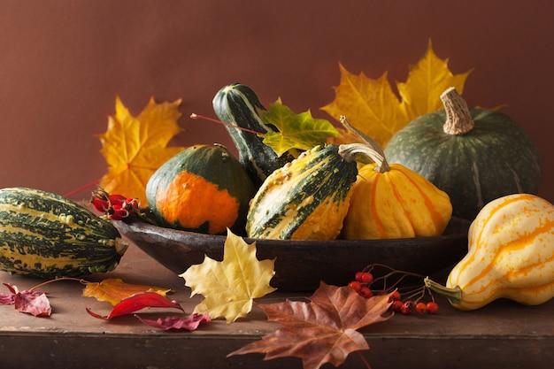 Mini zucche e foglie di autunno decorative per halloween