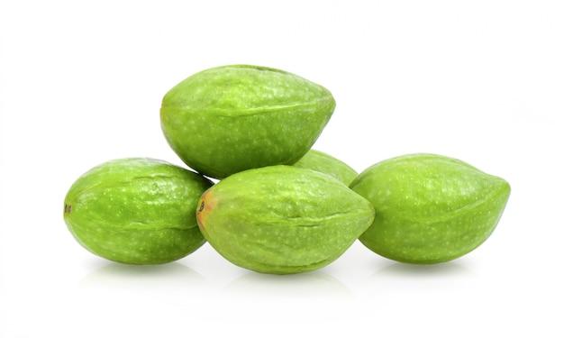 Mirabolani chebulici, legno di mirolan (terminalia chebula retz.) frutta, proprietà medicinali.