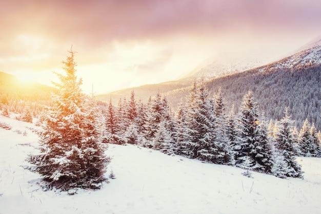 Misterioso paesaggio invernale con nebbia, maestose montagne