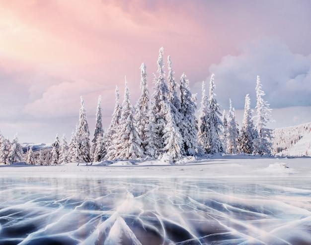 Misterioso paesaggio invernale maestose montagne in inverno. albero innevato inverno magico.