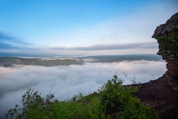 Misty mountain forest landscape al mattino