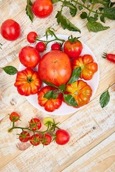 Mix di pomodori e foglie