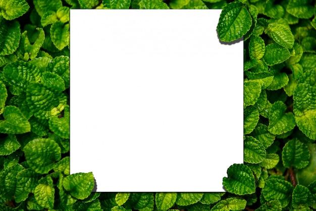 Mockup di carta di carta replica su foglie verdi