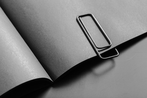 Mockup di libro bianco