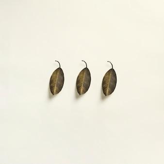 Modello a tre foglie disegnato sulla superficie