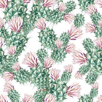 Modello acquerello con cactus