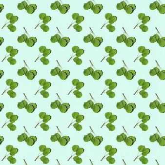 Modello creativo regolare senza cuciture con ramoscelli verdi con foglie di pioppo.