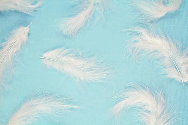 Modello delicato morbido piume bianche su sfondo pastello