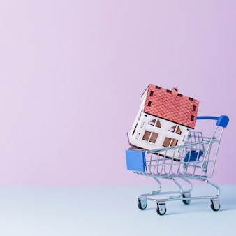 Modello di casa nel carrello della spesa in miniatura