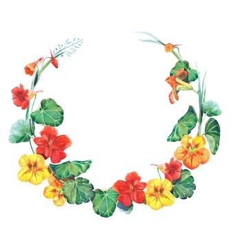 Modello di cornice rotonda dell'acquerello con fiori di nasturzio
