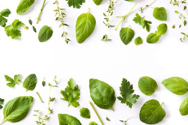 Modello di erbe aromatiche fresche verdi isolato su bianco copyspace vista dall'alto