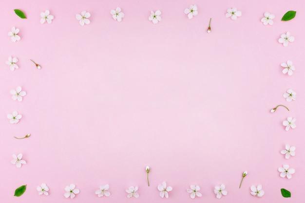Modello di fiori di fioritura del ciliegio bianco della molla