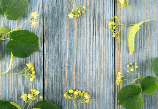 Modello di fiori di tiglio su fondo in legno.
