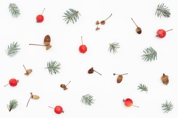 Modello di foresta di mele paradiso, rami di abete rosso e ghiande sulla superficie bianca