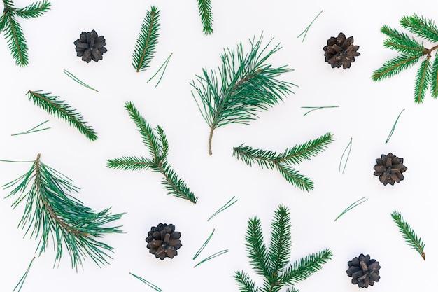 Modello di natale con rami di abete albero di pino