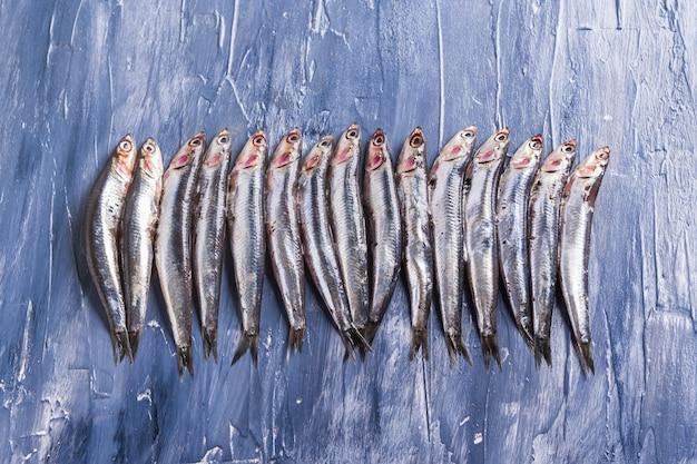 Modello di pesce. acciughe fresche sul blu