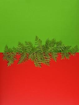 Modello di sfondo di natale con telaio di rami di abete sullo sfondo di colore verde.