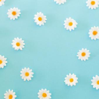 Modello fatto di chamomiles, petali su sfondo blu. vista piana, vista dall'alto