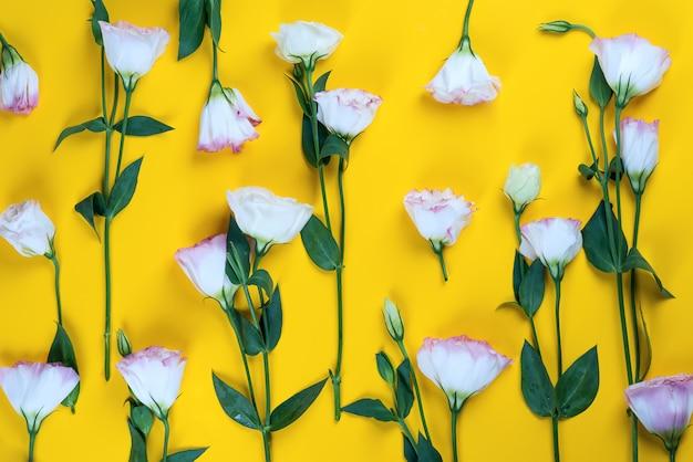 Modello fatto di fiori eustoma su sfondo giallo