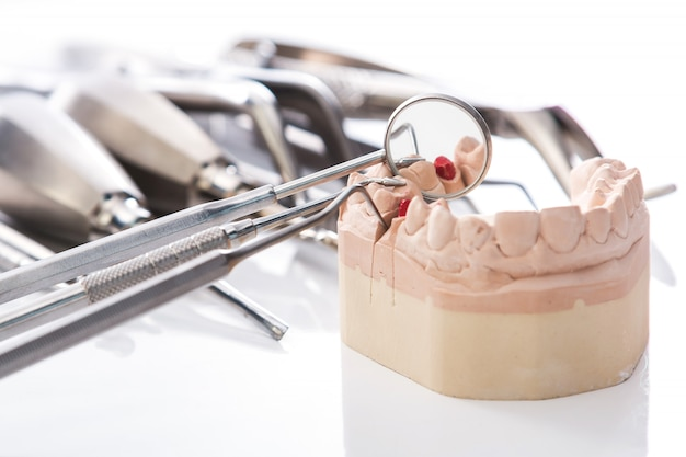 Modello in gesso di mascelle e strumenti dentali