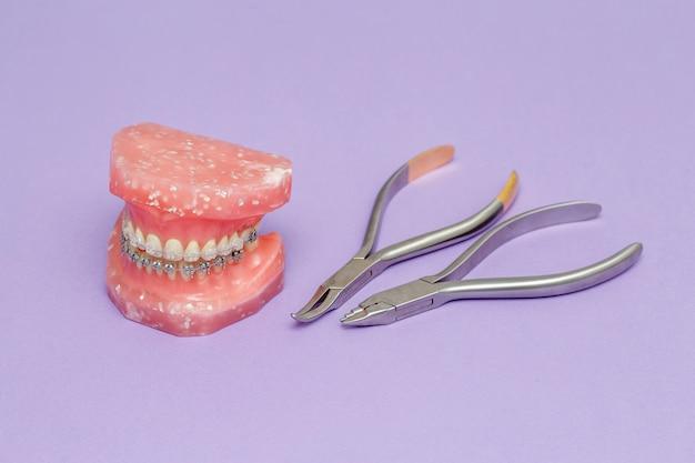 Modello ortodontico e strumenti ortodontici medici in metallo