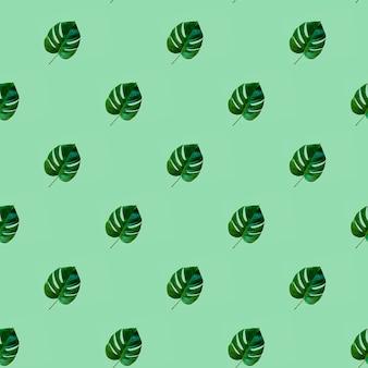 Modello senza cuciture con la foglia verde tropicale della pianta del philodendron di monstera sopra la menta neo.