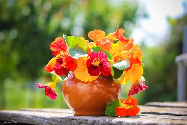 Molte foto di fiori. collage. messa a fuoco selettiva