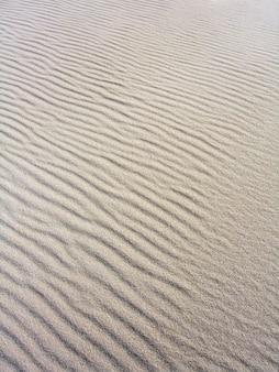 Molte increspature sulla sabbia modellate dall'influenza del vento.