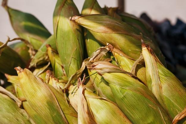 Molte pannocchie di mais nel carrello. righe di grano nel guscio, giacciono in pile. cibo di strada indiano, asiatico. spiaggia al tramonto di goa