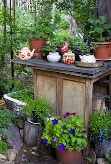 Molti vasi di fiori come decorazione in giardino in primavera. fiori decorativi su un tronco a primavera